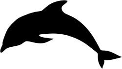 Delfin 02